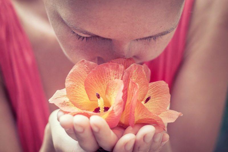 Hitta din doft